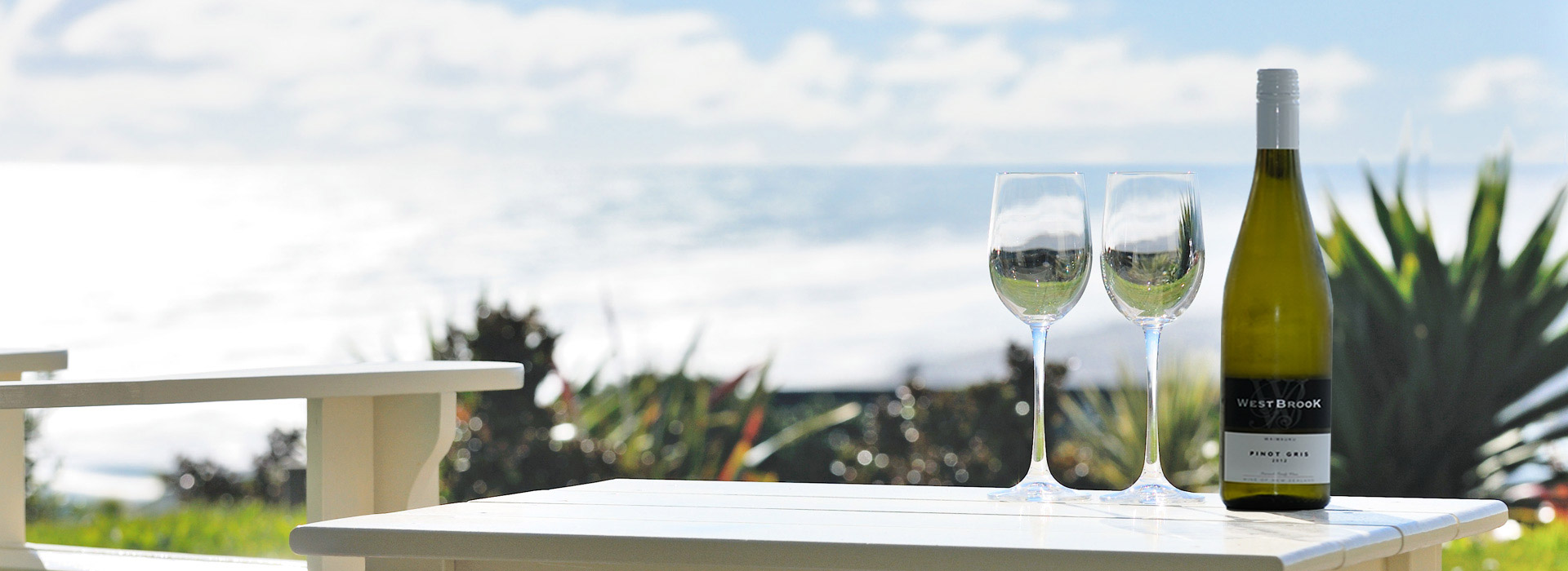 Luxury accommodation Auckland Muriwai black sand beach